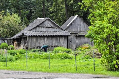 Bild: So sieht es auch heute noch in den Dörfern Litauens aus. Foto © 2011 by Bert Ecke.