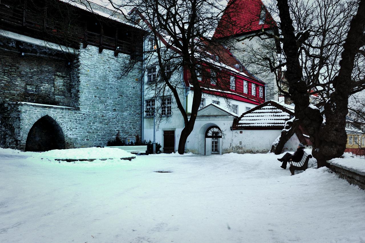 Bild: Ruhe im Garten des Dänischen Königs in der Altstadt von Tallinn. AF-S NIKKOR 28-300 mm 1:3.5-5.6G ED VR (28 mm, ISO640, f/11, 1/30 s). Klicken Sie auf das Bild um es zu vergrößern.