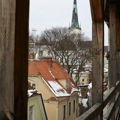 Bild: Bild: In der Altstadt von Tallinn sind die Häuser eng ineinander geschachtelt. Im Hintergrund ist die Oleviste kirik (Olevikirche) zu sehen.