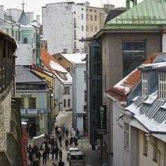Bild: Blick von der Stadtmauer auf die Müürivahe.