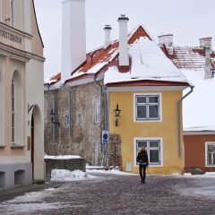 Bild: In der Toom-Kooli aud dem Domberg von Tallinn.