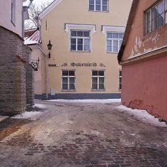 Bild: Toom-Rüütli auf dem Domberg in Tallinn.