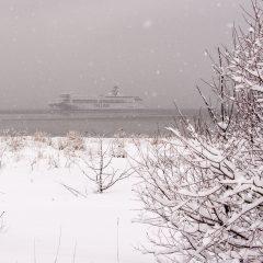 Bild: Fast schon gespenstich schleicht die TALLINK Fähre in den Stadthafen von Tallinn.