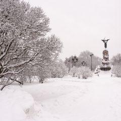 Bild: Die Russalka.