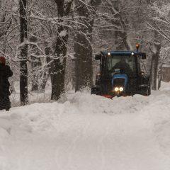 Bild: Im Park von Kadriorg in Tallinn werden die Schneemassen auf den Hauptwegen mit großen Traktoren weggeräumt. Babuschka muss deshalb in den Tiefschnee außerhalb des Weges ausweichen.
