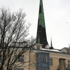 Bild: Der Turm der Oleviste kirik.