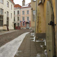Bild: In der Tolli von Tallinn.
