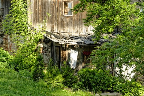 Bild: Holzhaus in Užupis - irgendwie romantisch.  NIKON D700 und AF-S NIKKOR 24-120 mm 1:4G ED VR.