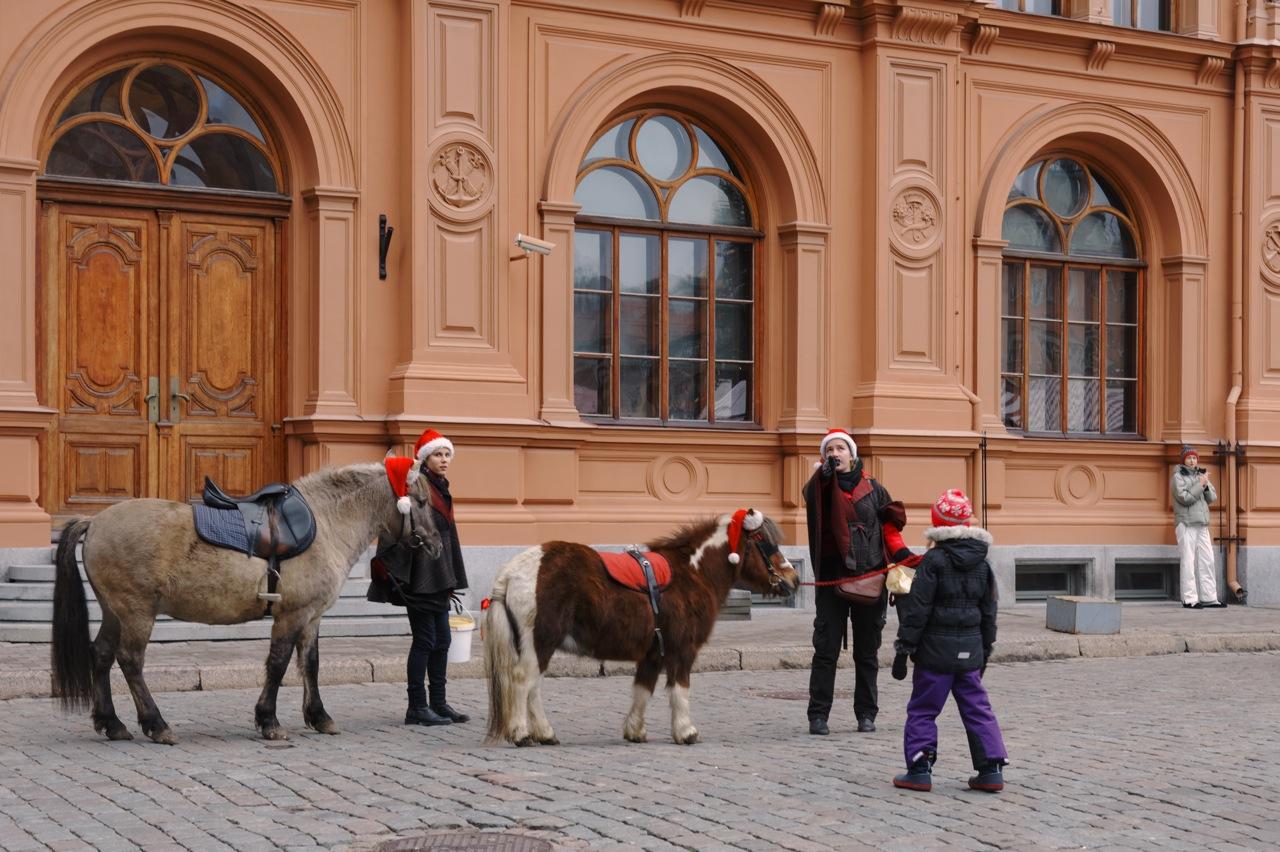 Bild: Riga mit Kinderaugen sehen - Weihnachtspony auf dem Domplatz in Riga. NIKON D700 mit AF-S NIKKOR 24-120 mm 1:4G ED VR. ISO 400 ¦ f/5,6 ¦ 60 mm ¦ 1/50 s ¦ kein Blitz. Klicken Sie auf das Bild um es zu vergrößern.