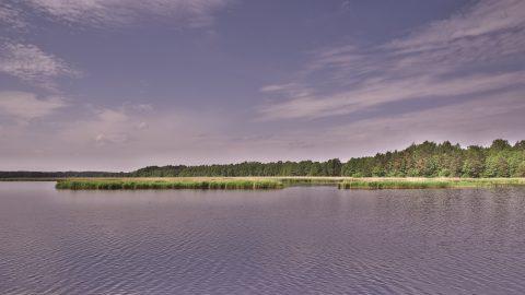 Bild: Im Bereich der Mündung der Lielupe in den Golf von Rīga dominiert Wald und Schilf. Die Mündung gibt es erst seit einem Hochwasser im Jahre 1755. NIKON D700 mit TAMRON SP 24-70mm F/2.8 Di VC USD. ISO 200 ¦ f/11 ¦ 24 mm ¦ 1/200 s ¦ kein Blitz. Klicken Sie auf das Bild um es zu vergrößern.