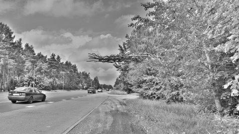 Bild: An der Holocaust Gedenkstätte Rumbula im Südosten von Rīga. NIKON D700 mit TAMRON SP 24-70mm F/2.8 Di VC USD. ISO 200 ¦ f/11 ¦ 24 mm ¦ 1/200 s ¦ kein Blitz. Klicken Sie auf das Bild um es zu vergrößern.