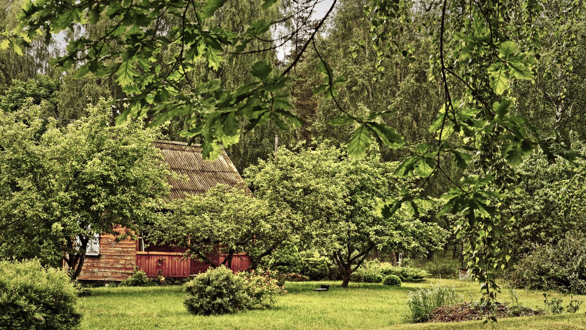 Bild: Vakarbuļļi ist ein Dorf im äußersten Nordwesten der lettischen Metropole Rīga. Obwohl das Zentrum der Großstadt nur wenige Kilometer Luftlinie entfernt ist, kann man hier die Ruhe und Einsamkeit lettischer Dörfer genießen. OLYMPUS OM-D E-M5 mit M.ZUIKO DIGITAL ED 12‑40mm 1:2.8. ISO 640 ¦ f/5,6 ¦ 25 mm ¦ 1/250 s ¦ kein Blitz. Klicken Sie auf das Bild um es zu vergrößern.