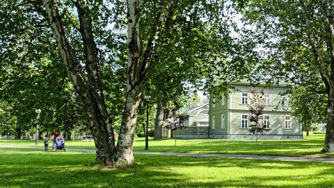 Bild: Im Park von Kadriorg. NIKON D700 mit AF-S NIKKOR 28-300 mm 1:3.5-5.6G ED. ISO 200 ¦ f/9 ¦ 28 mm ¦ 1/60 s ¦ kein Blitz. Klicken Sie auf das Bild um es zu vergrößern.