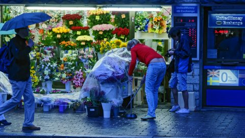Bild: Nachts unterwegs auf dem Blumenmarkt am Viru Tor in Tallinn. NIKON D700 mit AF-S NIKKOR 24-120 mm 1:4G ED VR. ISO 1250 ¦ f/7,1 ¦ 85 mm ¦ 1/160 s ¦ kein Blitz. Klicken Sie auf das Bild um es zu vergrößern.