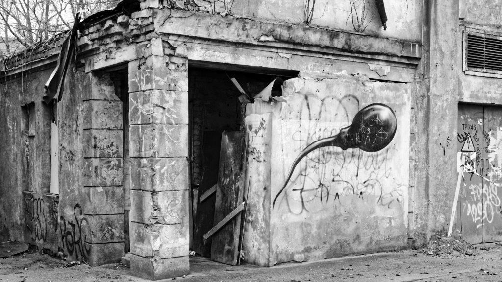 Bild: Verfallenes Haus am Rande des Parks Ziedoņdārzs inm Arbeiterviertel Grīziņkalns in Rīga. OLYMPUS OM-D E-M1 mit LEICA DG SUMMILUX 25 mm / F1.4. ISO 1600 ¦ f/5,6 ¦ 25 mm ¦ 1/50 s ¦ kein Blitz. Klicken Sie auf das Bild um es zu vergrößern.