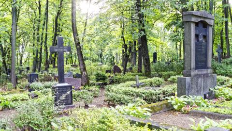 Bild: Der alte Bergfriedhof, der unmittelbar östlich an die evangelisch-lutherische Trinitatiskirche im Stadtteil Sarkandaugava von Rīga grenzt, ist einer der stillen Orte der Metropole an der Daugava. OLYMPUS OM-D E-M1 Mark II und LEICA DG SUMMILUX 1.7 / 15mm. ISO 640 ¦ f/7.1 ¦ 15 mm ¦ 1/15 s ¦ kein Blitz. Klicken Sie auf das Bild um es zu vergrößern.