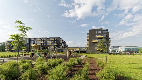 Bild: Moderner Wohnkomplex im Stadtteil Skanste von Rīga.
