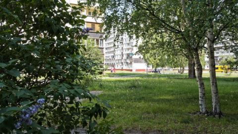 Bild: Der Stadtteil Zolitūde im Westen von Rīga ist ein Kind der 1980er Jahre. Plattenbauten aus der letzten Ära der Sowjetunion dominieren das Bild. Dennoch kennt man sich hier. Klicken Sie auf des Bild um es zu vergrößern.