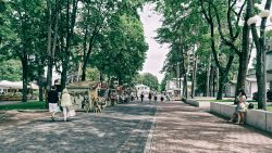 Image: Jūrmala in Latvia. Double click on the image to enlarge.